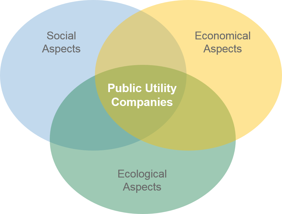 Paradoxes in Public Utility Companies